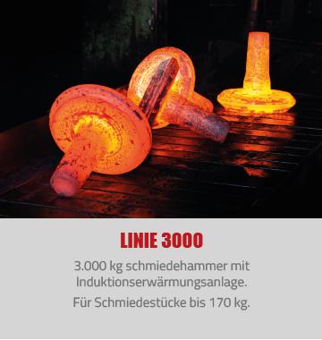 linie3000