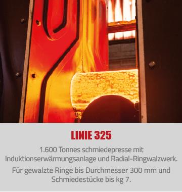 linie325